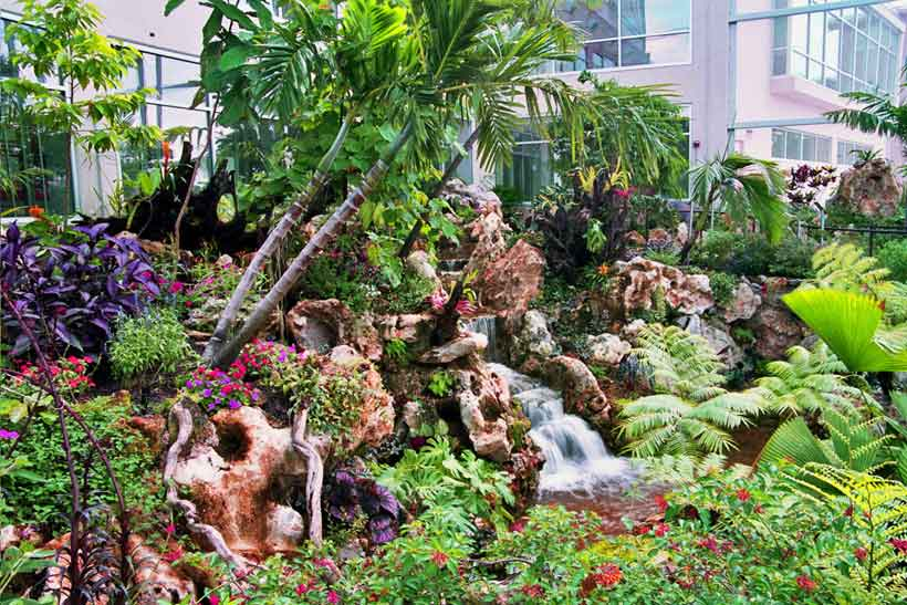 Environmentaldesigns Org Butterfly Rainforest At The Mcguire Center